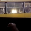 Flash cock for girls in bus. cumming in the end
