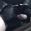 Gloved and handcuffed and self pleasure .