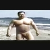 Japanese bear nude on the beach