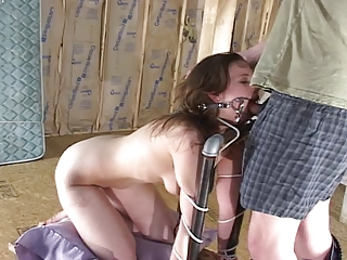 Hazel bound bitted and banged