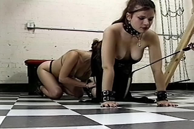 Slave-on-knees-gets-whipped-by-Mistress